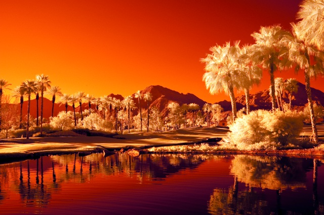 Palm Springs IR #2