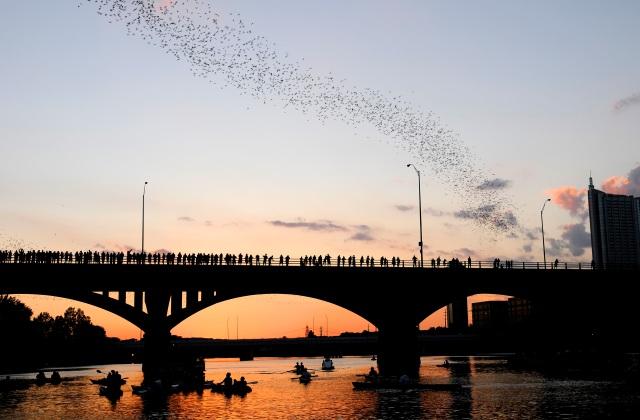 Austin Bats 2