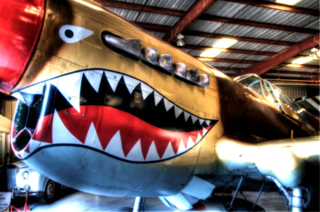 Curtiss P-40 Kittyhawk (HDR)