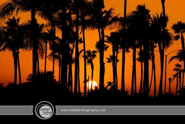Balboa Sunset SW+Talke