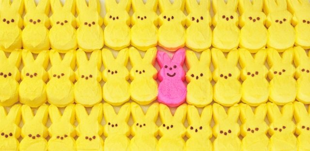 Peeps_Peter Talke Photography