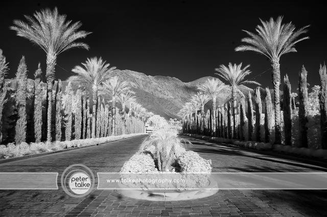 La Quinta, CA IR _Talke
